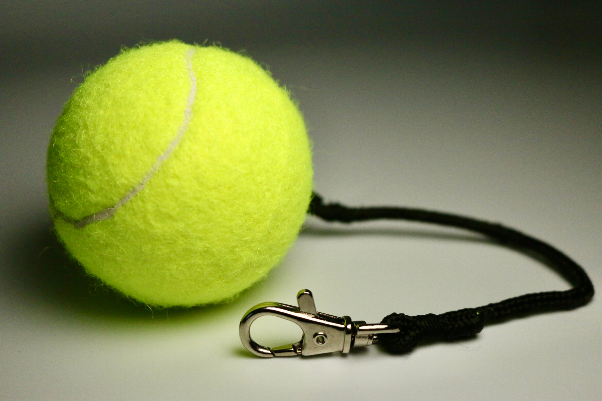BallAlong: A tennis ball with a collar and leash rope attachment for Dogs