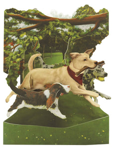 Grusskarte 3D Swing Card - Dogs In The Park - Oceanshore.ch