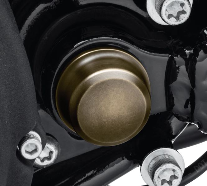 Swingarm Pivot Bolt Covers – Brass Collection