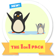 Load image into Gallery viewer, The 1 on 1 Pack (10 Phonics Lessons)