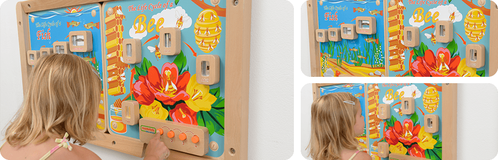 The board containing real life specimens encapsulated in clear acrylic blocks which allow children to closely look into details.