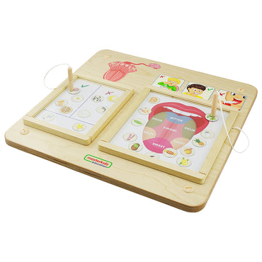 Sense of Taste Board Learning Educational Kid toys