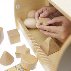 Tactile Training Shape Teaching Set (Tray Included)