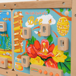 Light-Up Bee Life Cycle Stages Panel