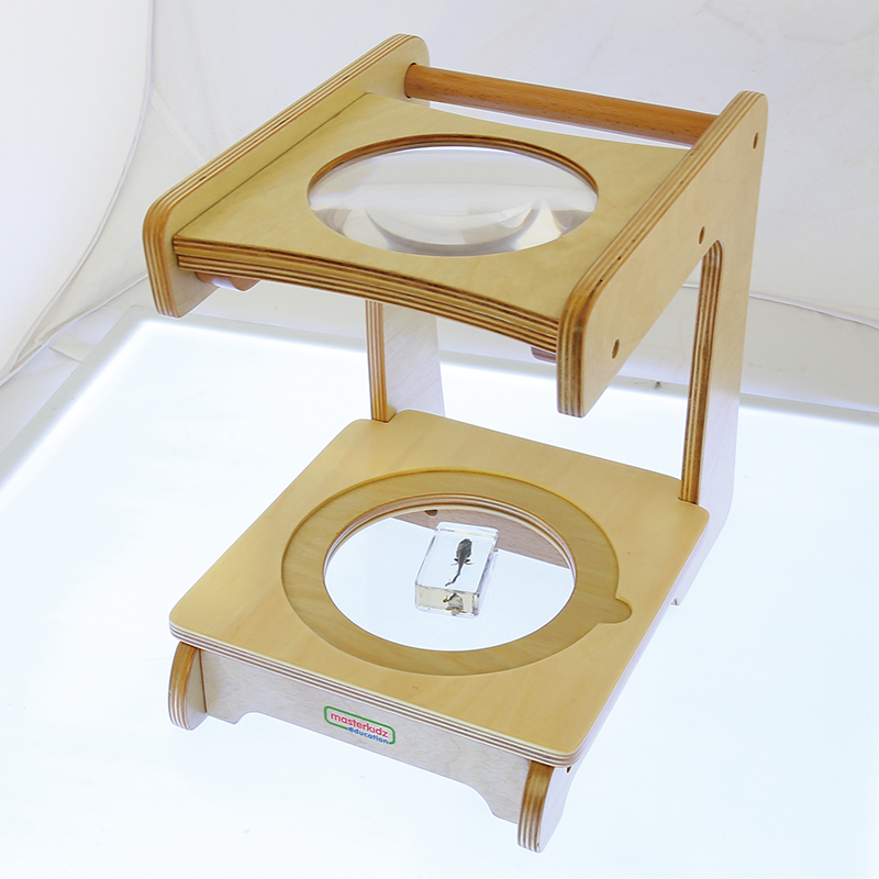 Wooden Magnifying Ttand(3x) with Transparen Stage