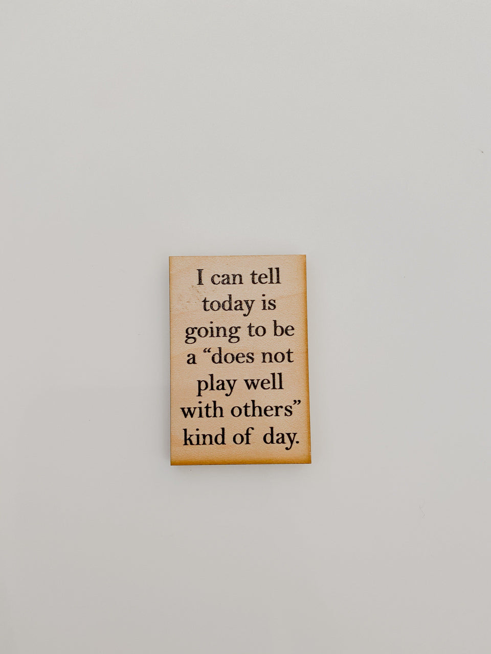 """Does not play with others well"" kind of a day - Magnet"