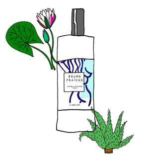 Brume Fraîche - Aloe Vera and Water Lily Natural Hair Mist