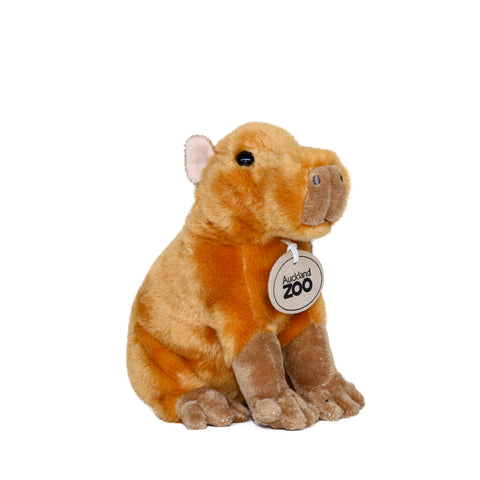 Capybara Plush Toy
