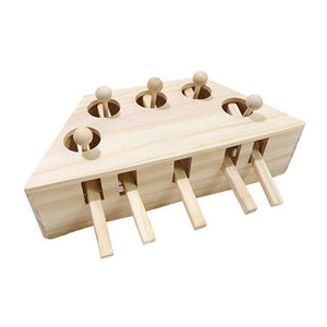 Cat Toy  Solid Wooden Interactive Maze Pet Hit Hamster With Five Holes Mouse Hole Catch Bite Catnip Funny Toy - SaturnLoop Shops Sales