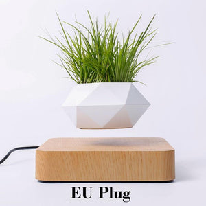 Hot Sale Levitating Air Bonsai Pot Rotation Planters Magnetic Levitation Suspension Flower Floating Pot Potted Plant Desk Decor - SaturnLoop Shops Sales