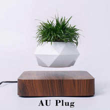 Load image into Gallery viewer, Hot Sale Levitating Air Bonsai Pot Rotation Planters Magnetic Levitation Suspension Flower Floating Pot Potted Plant Desk Decor - SaturnLoop Shops Sales