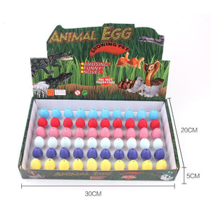 Free Shipping-60 in 1 Magic Dinosaur Eggs Toys for kids,Water Growing Dinosaurs - SaturnLoop Shops Sales