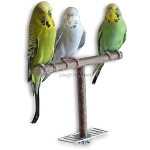 Parrots Bird Stand Bar Parrot Bite Chew Toys Swing Pet Bracket Wooden Rest Play Perches Supplies Birdcage Accessories - SaturnLoop Shops Sales