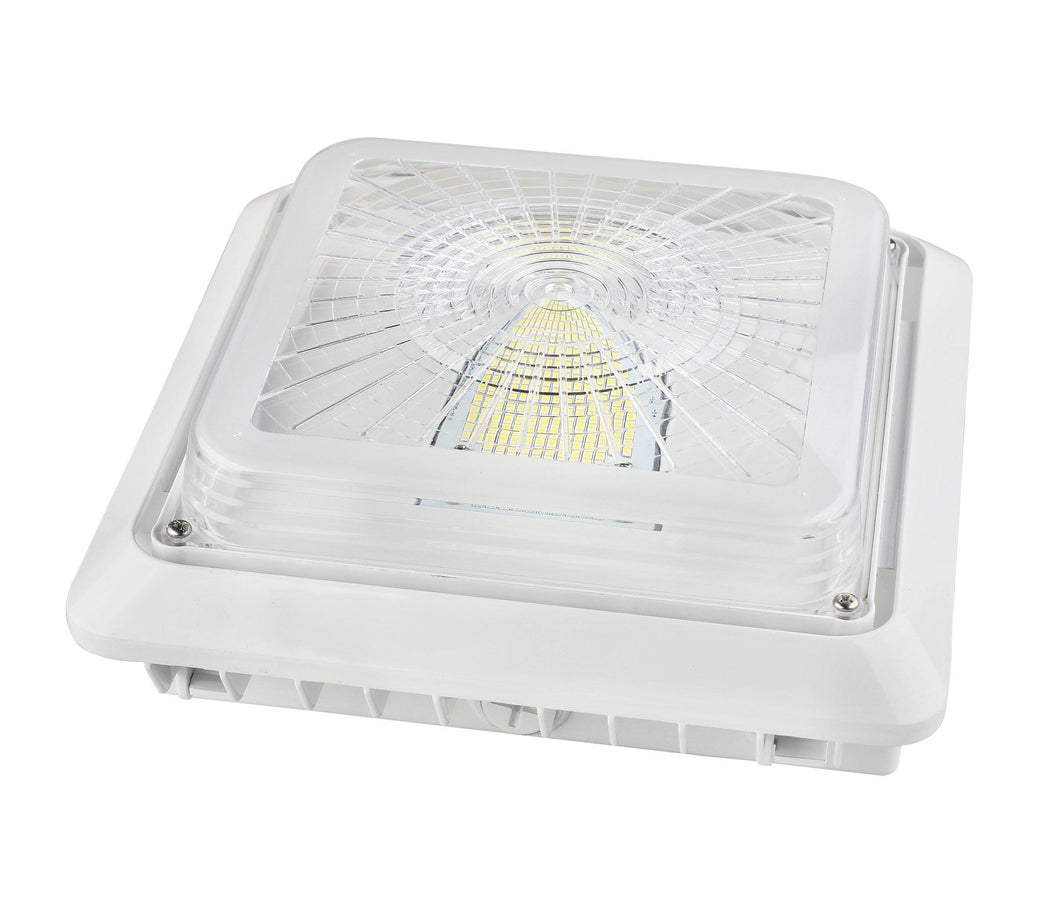 LED Canopy Light 00