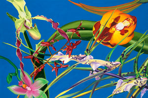 Enter the Orchids Giclee  on Canvas