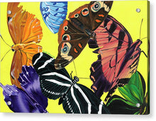 Load image into Gallery viewer, Butterfly Waltz - Acrylic Print