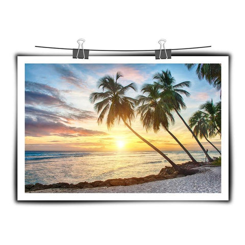 jigsaw puzzle Sea sunlight coconut tree 1000 PIECE PUZZLE Best Family game entertainment toys