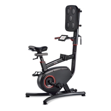 Load image into Gallery viewer, LifeSpan Cycle Boxer - Upright Bike with Punch Pad