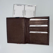 Load image into Gallery viewer, Paul & Taylor Oversized Wallet  2648