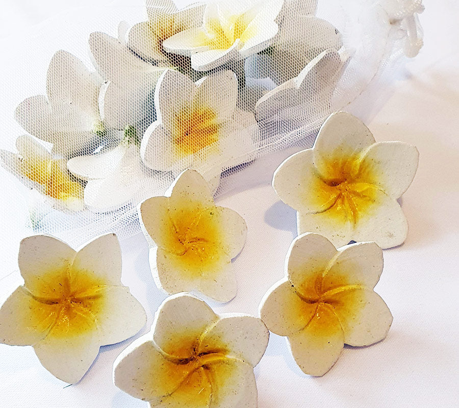 White/yellow Wooden Frangipanis