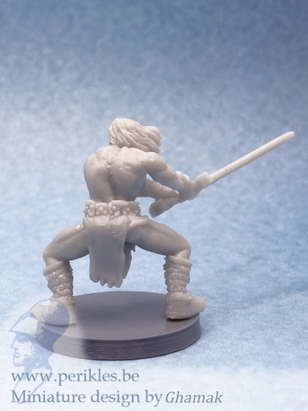 Barbarian Adventurer (28mm miniature)
