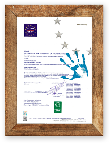 Certificate 1 Image