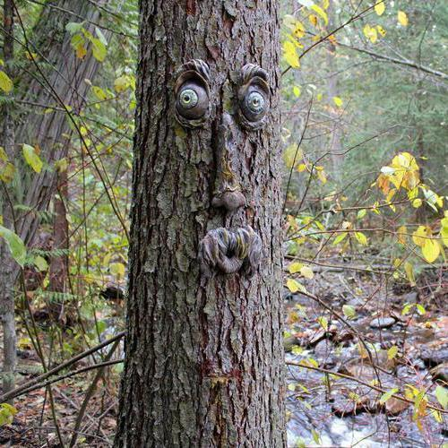 Tree Face Decor Outdoor【Buy2 get Free Shipping】