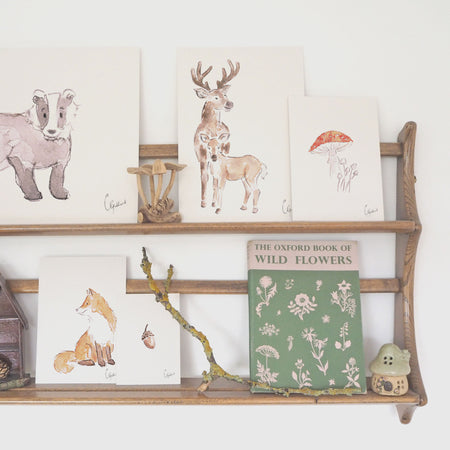 The Little Woodland Collection