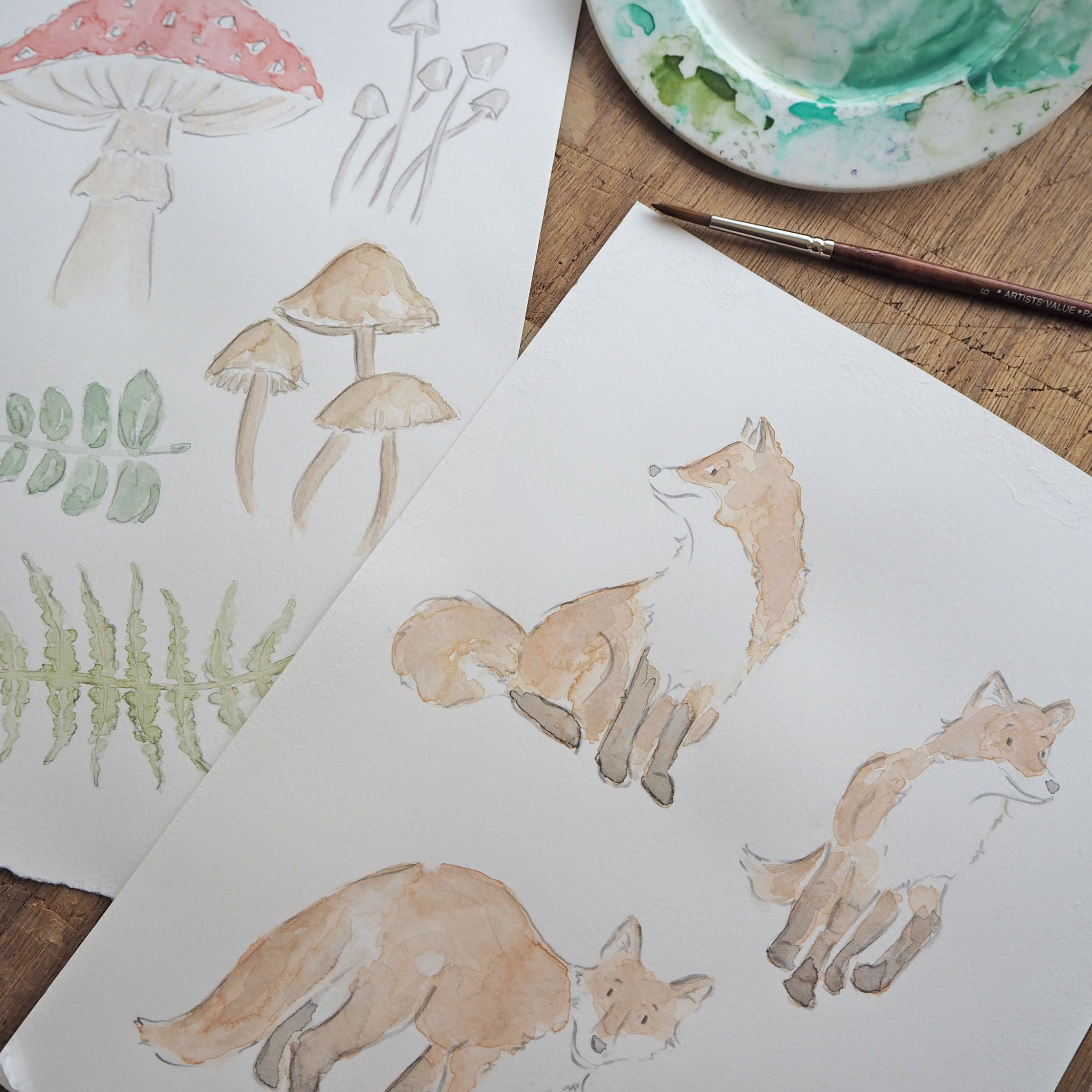 watercolour illustrations of woodland animals