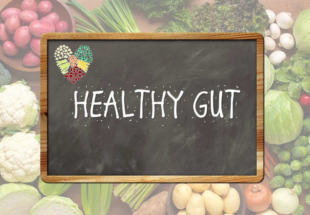 Oz Naturals | The Health Files | Healthy Gut