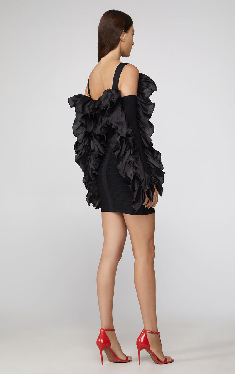 Ruffled Mini Dress