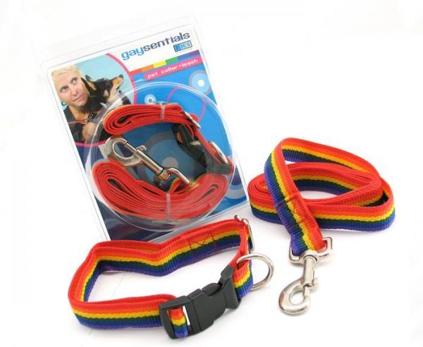 Gaysentials Pet Collar and Leash Set Large Phs International centerpoint-fashion.myshopify.com