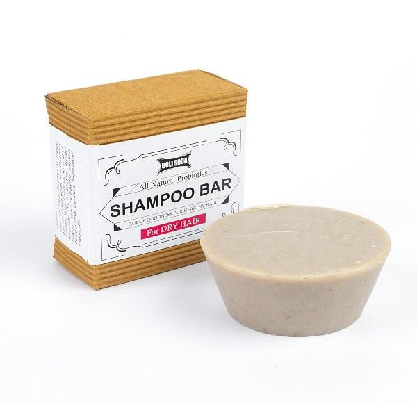 All Natural Probiotics Shampoo Bar For Dry Hair (Pack Of 1)