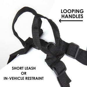 Walking Harness Black - Large