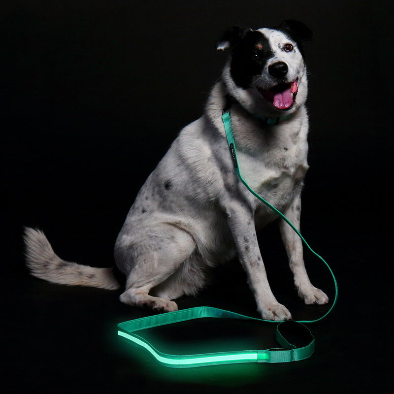 LED Leash - Green