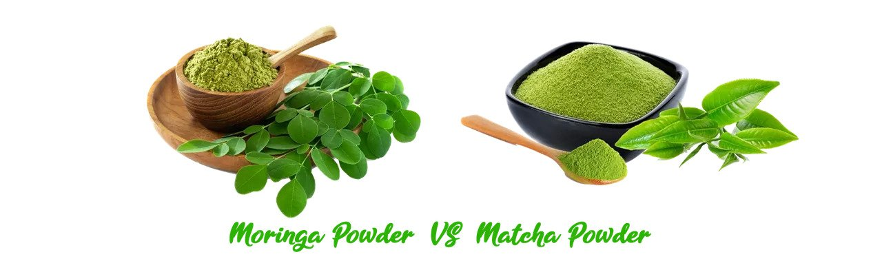 What is the Difference between Moringa and Matcha Powders?