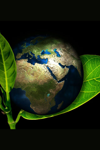 Sustainability is important, ethical business, sustainable packaging