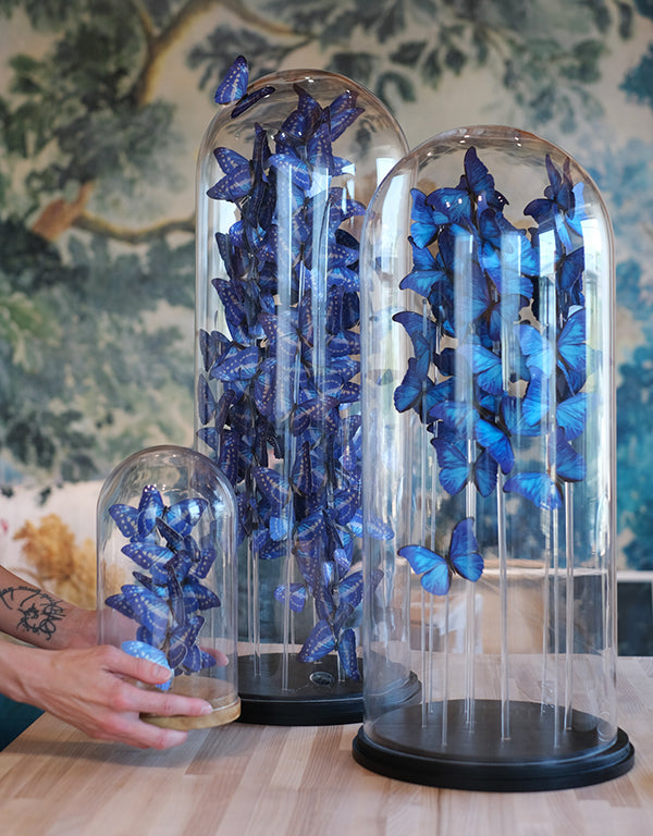 Moth and Myth Butterfly Bell Jar Tutorial 11