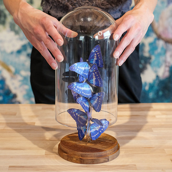 Moth and Myth Butterfly Bell Jar Tutorial 10