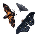 Load image into Gallery viewer, 💫NEW💫'Belladonna' Moth Set Artist Wholesale