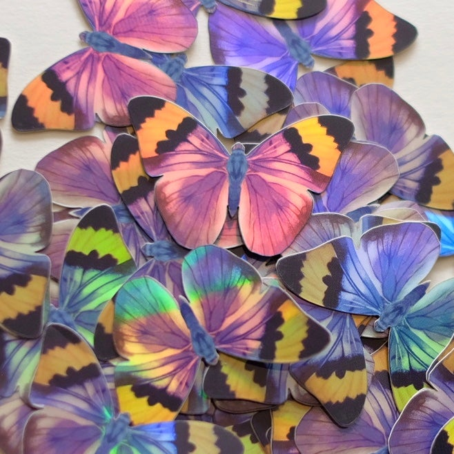 'Earthly Delights' Mini Butterfly Holographic Sticker Set