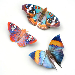 'Dawn' Butterfly Set Reseller Wholesale