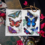 Load image into Gallery viewer, The 'Topaz' 7 Piece Butterfly Set