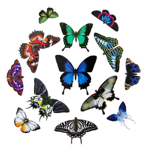 "The Butterfly Collection 2 ""Jewels of the East"""