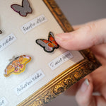 Load image into Gallery viewer, 💫Back in Stock💫'Micro' Moth & Butterfly Collection