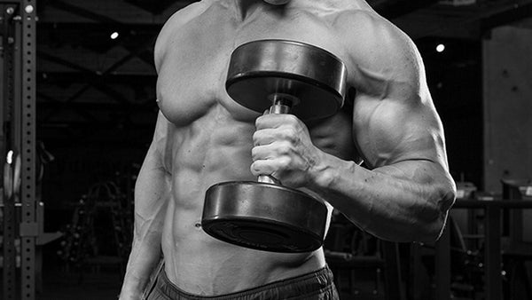 hammer curl ifast