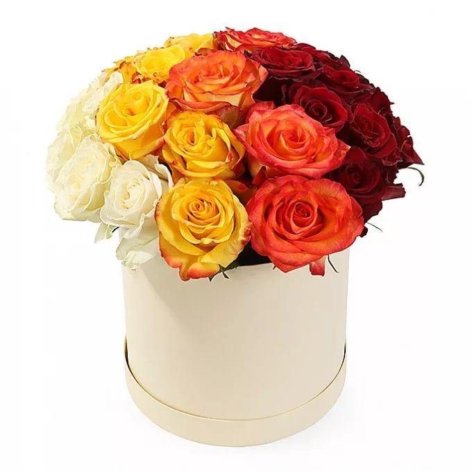 Seasonal Mixed Color Hatbox
