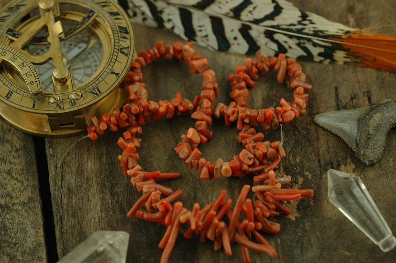 "Natural Italian/Yemeni Branch Coral Beads, 16"" strand, 2x8-3x21mm - ShopWomanShopsWorld.com. Bone Beads, Tassels, Pom Poms, African Beads."