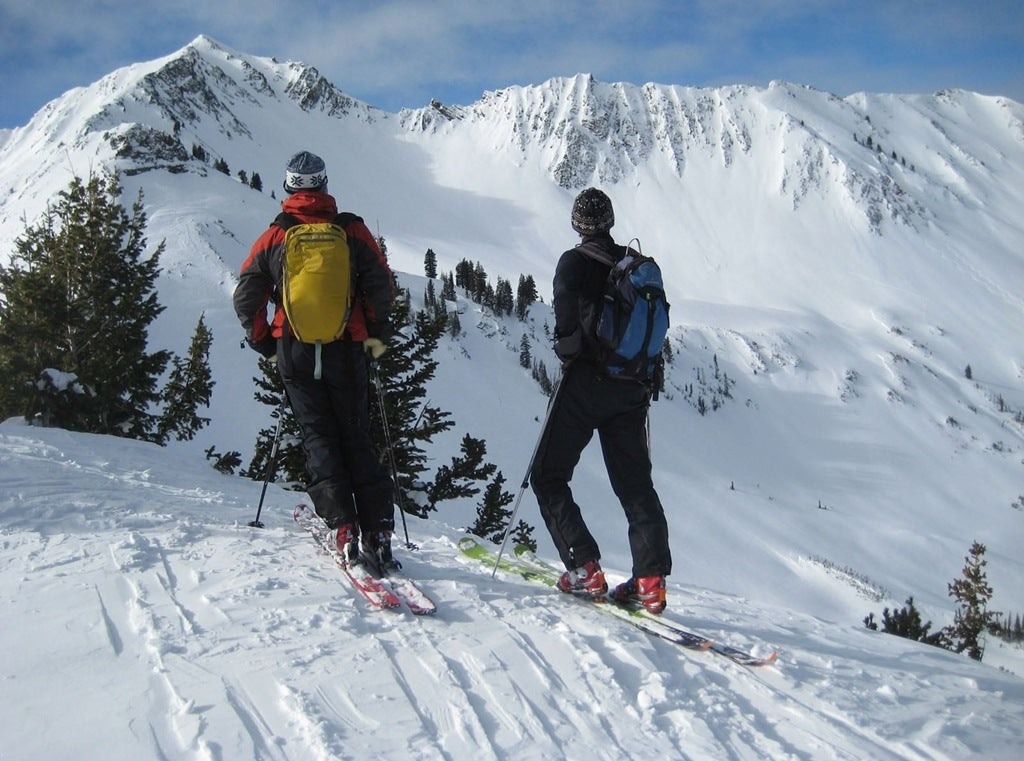 Cardiac Bowl Utah backcountry skiing