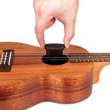 Load image into Gallery viewer, Ukulele Humidifier - D'addario